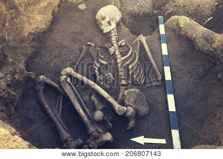 Archaeological excavations and finds (bones of a skeleton in a human burial) working tool ruler arrow direction north a detail of ancient research prehistory.