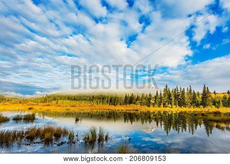 The concept of ecotourism. Patricia Lake among the firs and pines. Water reflects the sky. Cool cloudy morning in the Rocky Mountains