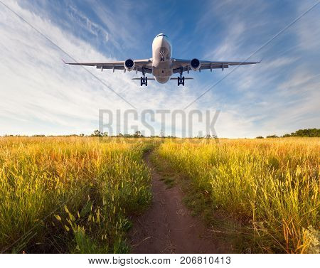 Colorful Landscape With Passenger Airplane