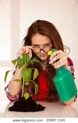attractive woman botanist spraying a green seedling