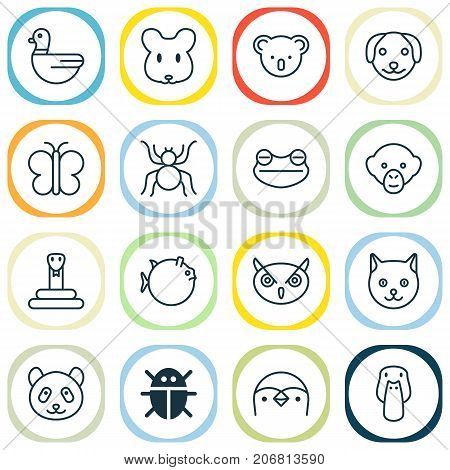 Nature Icons Set. Collection Of Puppy, Marsupial, Rat And Other Elements