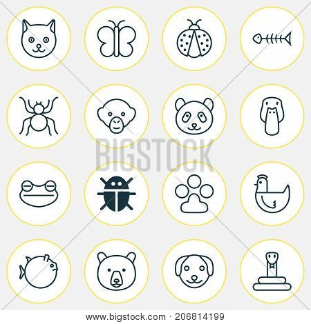 Zoology Icons Set. Collection Of Puppy, Ladybird, Baboon And Other Elements