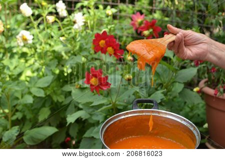 Still hot just made apricot jam in fron of garden flowers