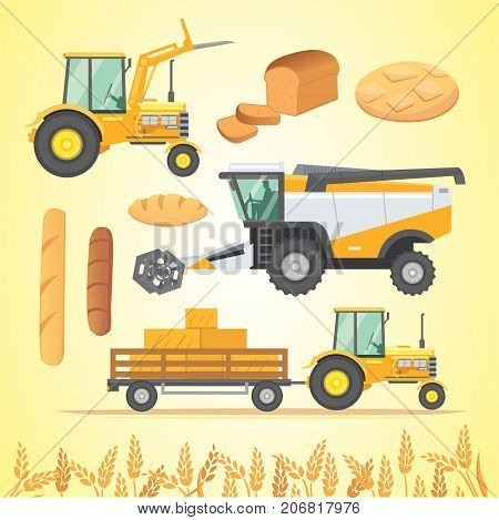 Set autumn harvesting. Farm agricultural machines and vehicle. Farming machine harvester, combine and tractor