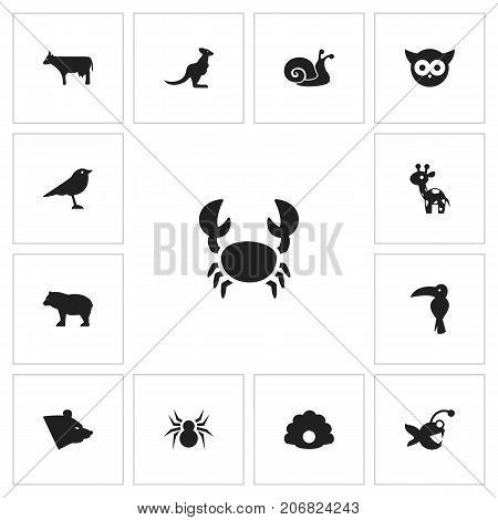 Set Of 13 Editable Animal Icons. Includes Symbols Such As Arachnid, Fish, Kine And More