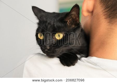 Man holding black cat. Adoption concept