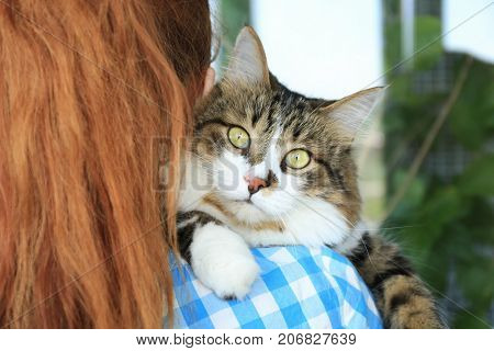 Woman holding fluffy cat. Adoption concept
