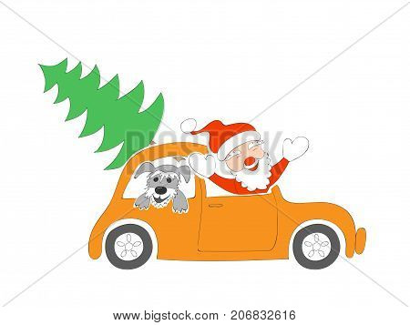 New year card with isolated funny cartoon santa claus happy schnauzer puppy and christmas fir-tree in the retro auto on the white background. eps 10