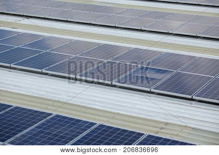 Solar Cells In A Solar Field In The Sunshine