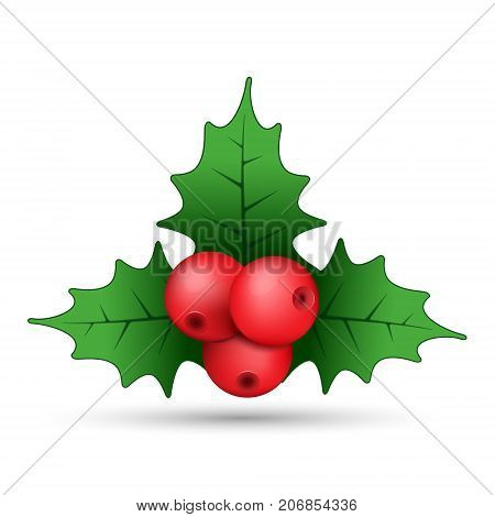 Christmas holly berries realistic sprig vector. Simple mistletoe decorative red and green illustration.