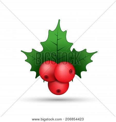 Christmas holly berries realistic twig illustration vector. Simple mistletoe decorative red and green illustration.