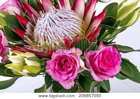 Arrangement Of Protea And Pink Rose Flowers