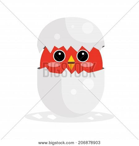 Cute newborn red bird character, funny nestling in egg cartoon vector Illustration on a white background