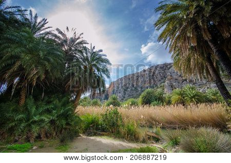View of Preveli beach at Libyan sea, river and palm forest, southern Crete , Greece