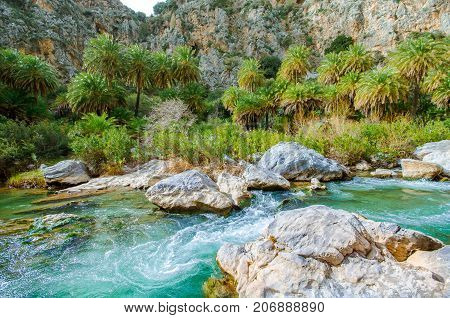 View of Kourtaliotis river and canyon near Preveli beach at Libyan sea, river and palm forest, southern Crete, Greece