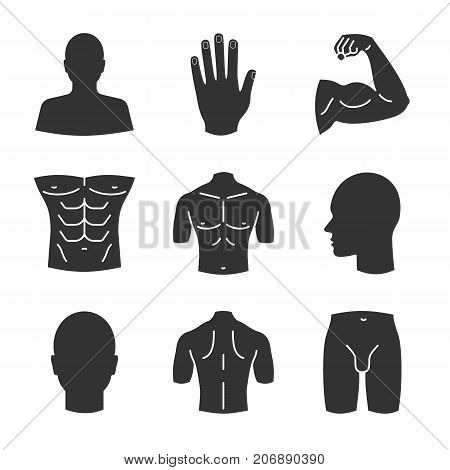 Male body parts glyph icons set. Head, hand, bicep, torso, back, buttocks, profile, groin. Silhouette symbols. Vector isolated illustration