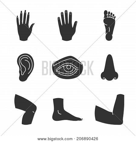 Human body parts glyph icons set. Silhouette symbols. Male and female hands, nose, eye, feet, ear, elbow joint, knee. Vector isolated illustration