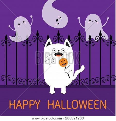 Happy Halloween. Spooky frightened cat holding pumpkin face on stick. Forged iron fence. Three flying ghosts hands up Boo. Cute Funny cartoon baby character. Flat design. Violet background. Vector