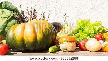 Tasty fresh Autumn vegetables on a light backgroud.