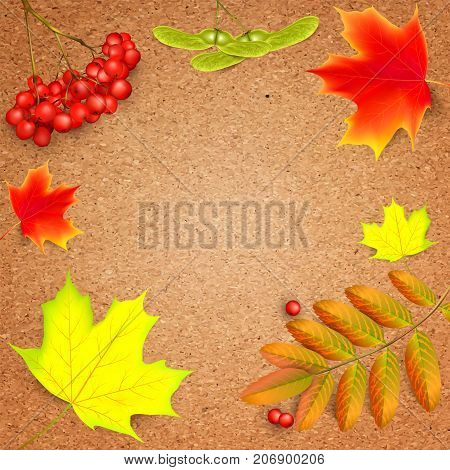 Banner on a crafting paper with maple autumn leaves and rowan branches with ashberry . Autumn maple leaf and red rowan branches with ashberry on a crafting paper. Vector illustration