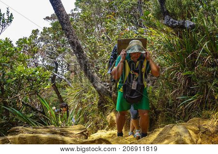 Ranau,Sabah-March13,2016:Mountain porter carrying a heavy backpack to Laban Rata of the majestic Mount Kinabalu in Ranau,Sabah Borneo,Malaysia.