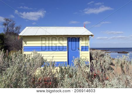 Bathing hut amongst the bushes on Melbourne's Brighton Beach with the ocean and blue sky background
