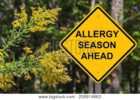 Caution Sign - Allergy Season Ahead Warning