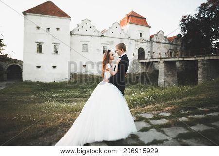 Beautiful romantic wedding couple of newlyweds hugging near old castle.