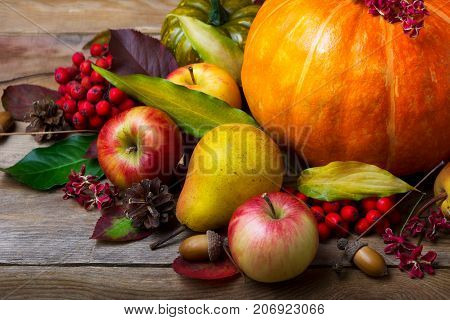 Harvest Concept With Pumpkin, Pears, Apples, Rowan Berries