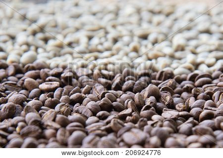 Mixture of different state of coffee beans.Roasted and raw Arabica Coffee bens background