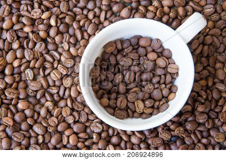 Arabica Coffee beans. White cup with coffee beans inside and background
