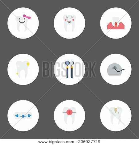 Flat Icons Enamel, Dentition, Cleaned And Other Vector Elements