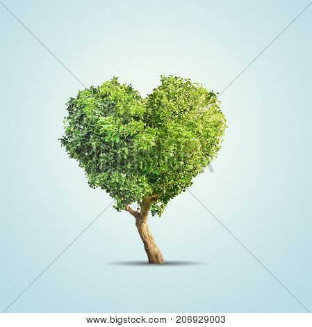 3d illustration of green tree shaped in heart isolated over blue background