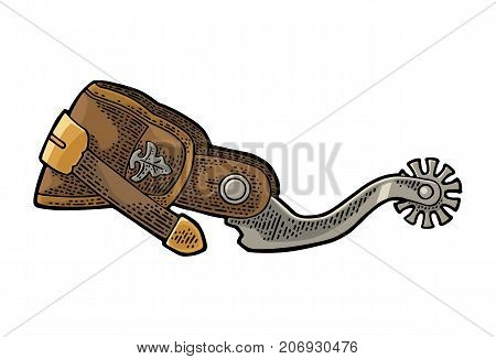 Spur from leather and metal. Vintage color engraving illustration for poster, web. Isolated on white background.