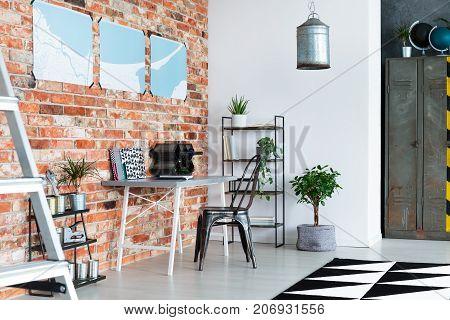 Plants In Loft