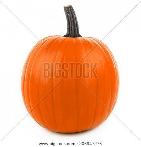 One orange pumpkin isolated on white background, Halloween concept