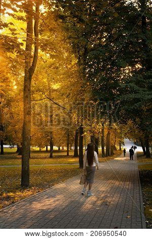 Stylish girl walks in the autumn park. People are walking in the distance. The sun's rays make their way through the leaves.