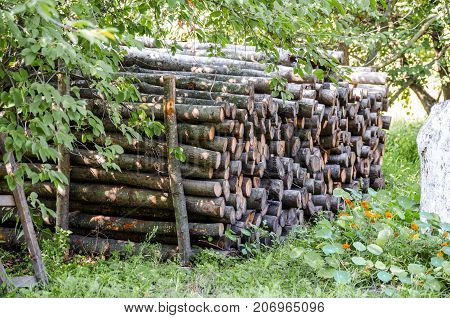 A stack of firewood stacked in a row.