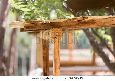 logs on the canopy . In the park in nature