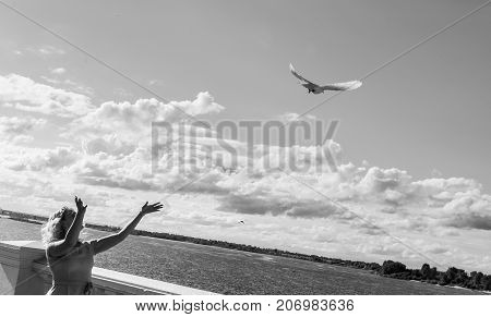 the girl launches a pigeon in the blue sky