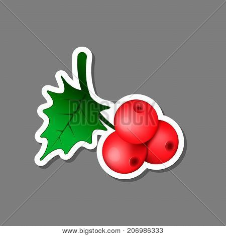 Christmas Holly berry Twig sticker. Vector illustration.