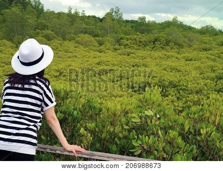 Female Admiring Vibrant Green Golden Mangrove Field in Rayong Province of Thailand