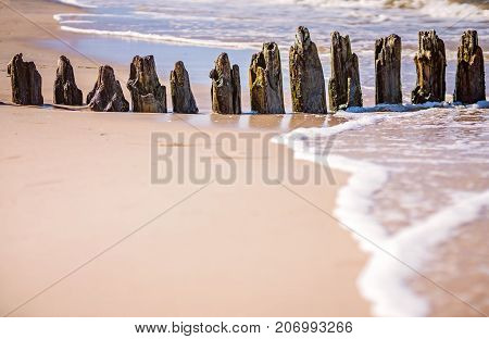 Old wooden breakwaters on the Baltic coast beach