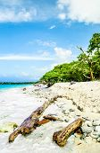 View on paradies beach of Playa Blanca on Island Baru by Cartagena in Colombia poster