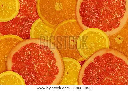 The cut juicy lemons, oranges and grapefruits