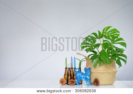 Tropical Plant With Green Leaves And Candle Holder Made Of Glass Bottle
