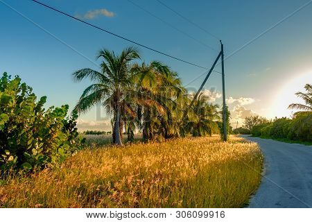 Guy Banks Rd At Sunset, One Of The Only Two Roads To Go Around The Island Of Little Cayman, Cayman I