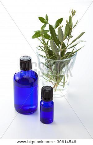 Herb Leaf And Dropper Bottle