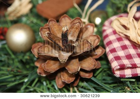 Pinecone with Holiday Guests