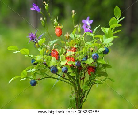 Wild Plants Bouquet, Blueberry And Wild Strawberry, Forest Posy, Wild Herbs Bouquet, Meadow Flowers